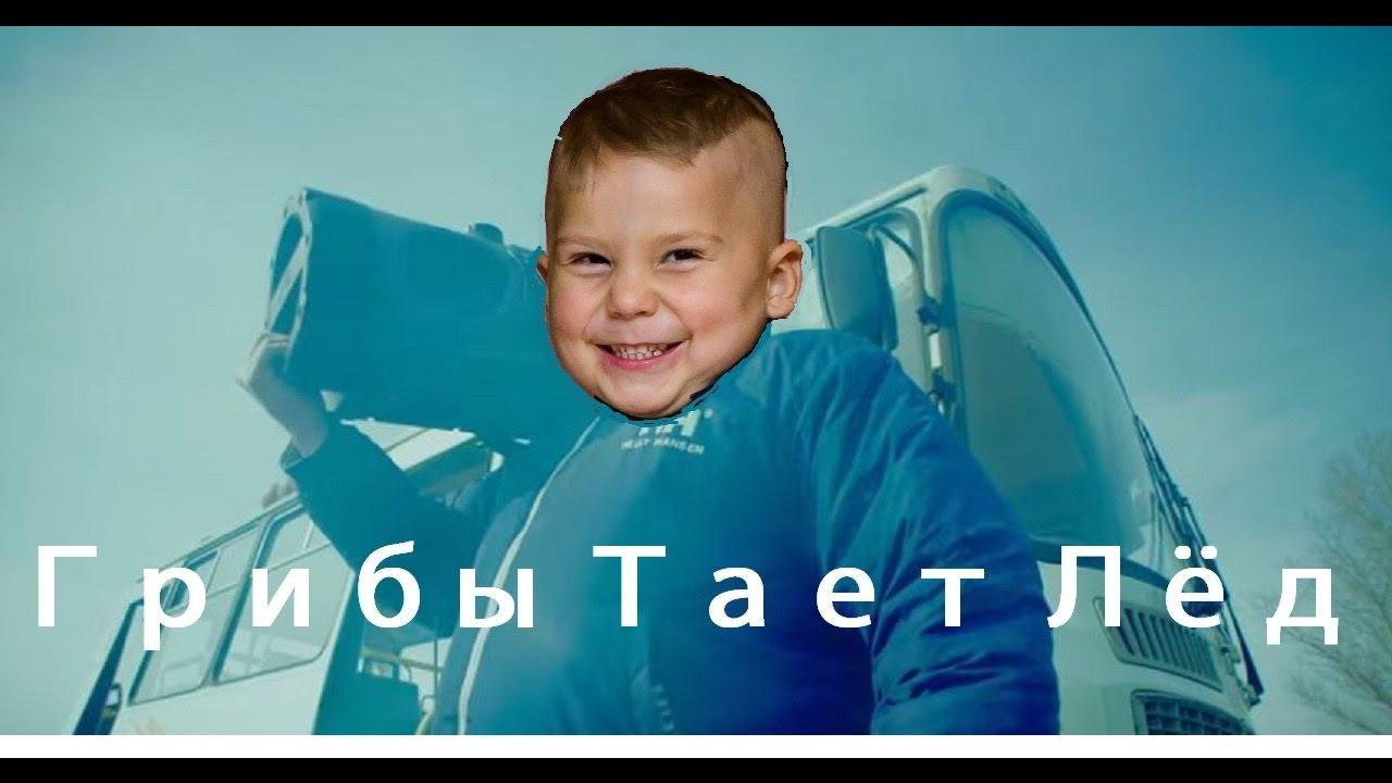 Taet Led Cover Slushat Trek Sejchas V Mp3 Kachestve Muzyka Ot Griby